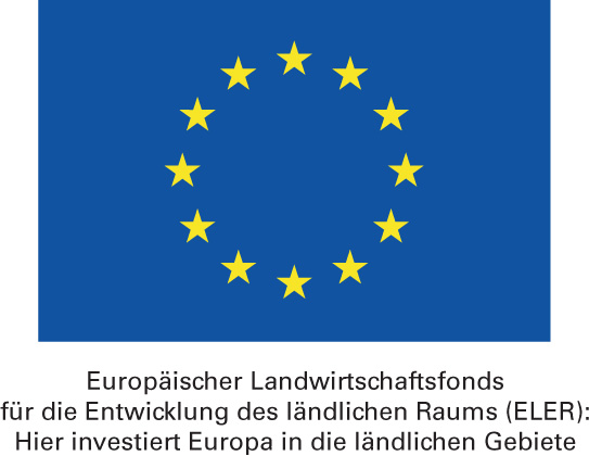 Toi_-_EU-Emblem_mit_Foerderspruch_Kopie
