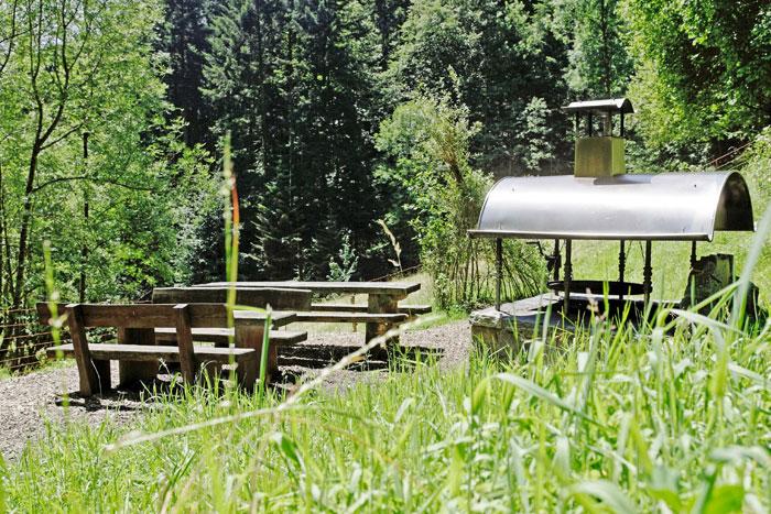 Walderholungsanlage im Eschgrund
